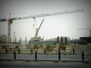 Camels and Cranes