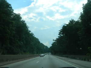 Beautiful trees along the highway in PA